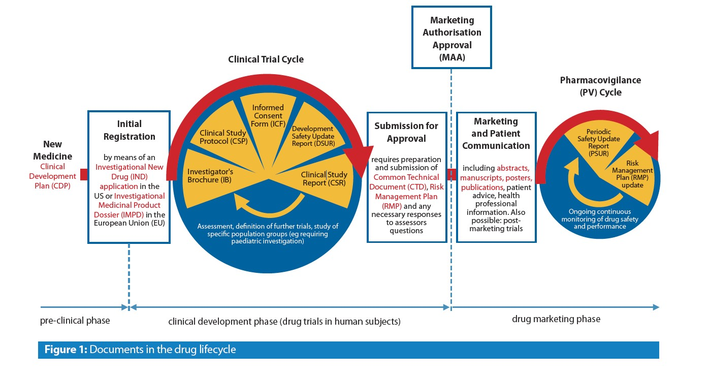 What You Need And When The Key Documents In The Drug Lifecycle Trilogy Writing Consulting Gmbh